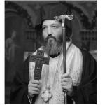 Као младица маслине – Додатак сећању на драгога брата, епископа Јеронима