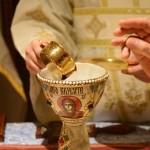 Света Архијерејска Литургија у манастиру Лешје код Параћина