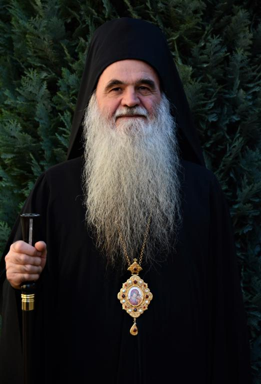 Епископ крушевачки Господин др Давид (Перовић)