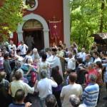 Света Архијерејска Литургија у Доброљупцима код Александровца