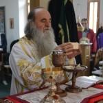 Епископ Давид (Перовић): Литургичка поглавља